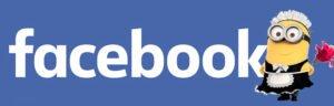Vider le cache facebook